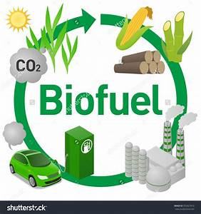 Try Biofuel Investment For Multiple Income Streams  U2013 The