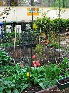verlegen eines bewasserungssystems im eigenen garten With garten planen mit bewässerungssystem balkon ohne wasseranschluss