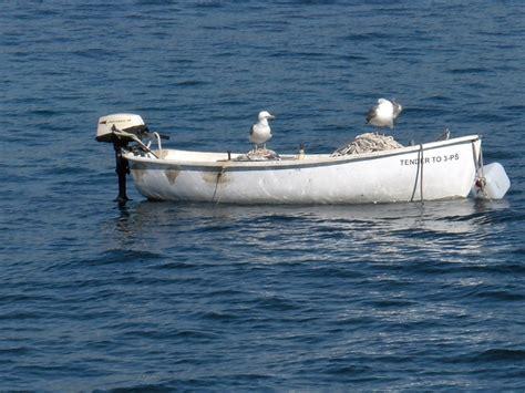 Pescatori Croazia pescatori in croazia viaggi vacanze e turismo turisti