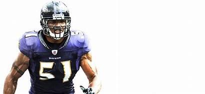 Ravens Baltimore Lgbt Official Website Nfl