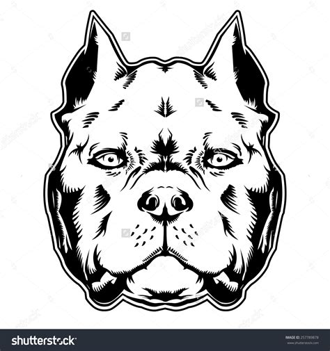 Free american bully clipart in ai, svg, eps and cdr   also find native american border design or native american tattoo clipart free pictures among +73,187 images. American Bully Vector at Vectorified.com   Collection of ...