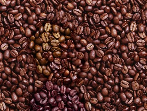 Find the Man in The Coffee Beans