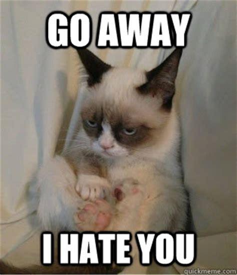 I Hate You Memes - image gallery i hate you meme