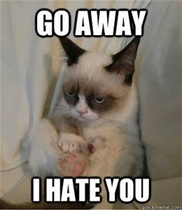 Image Gallery i hate you meme