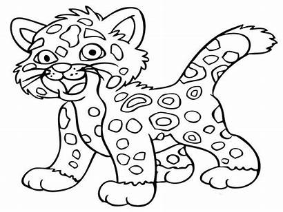 Coloring Animal Pages Animals Printable Wild Leopard