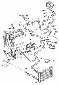 2003 Jetta Engine Diagram