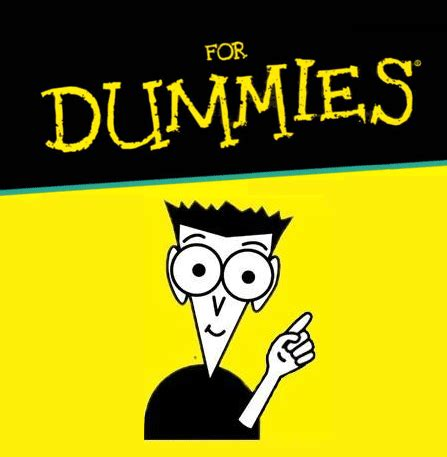 Seo For Dummies by Dummies Guide Importance Of Seo For Your Business