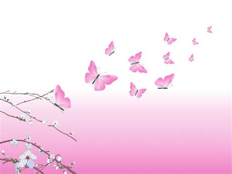 Beauty Pink Design Butterfly Pink Wallpaper Backgrounds
