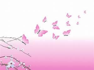 Pink Butterfly Design HD Wallpaper | Vector & Designs ...
