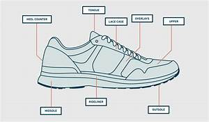 Running Shoes  Everything You Need To Know