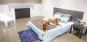 Wag hotels redwood city dog and cat boarding day care for Red dog daycare