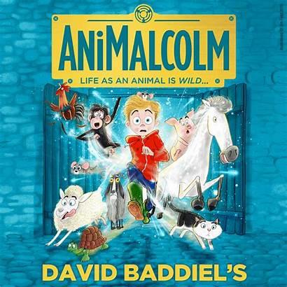 David Baddiel Wildest Babes Town Babesabouttown Yet