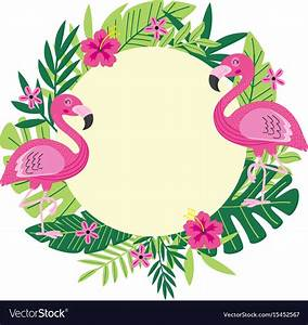 Tropical Frame With Flamingo Royalty Free Vector Image