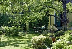 Baume im garten planen in 4 schritten obi ratgeber for Garten planen mit sonnenmarkise für balkon
