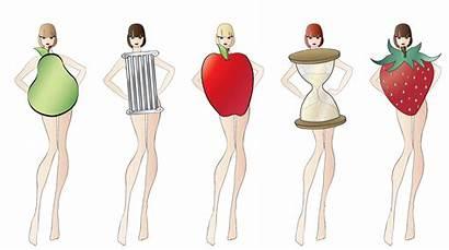 Shapes Basic Shape Series Popular