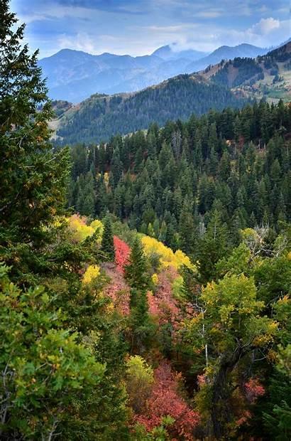 Tablet Mobile Mountain Scenery Utah Autumn Fall