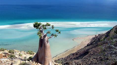 <b>Socotra</b> in November