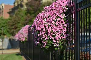 decoration mur exterieur maison obasinccom With idee deco de jardin exterieur 1 deco mur exterieur jardin 51 belles idees 224 essayer