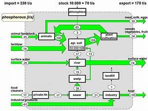 Mfa Diagrams  Paul H  Brunner