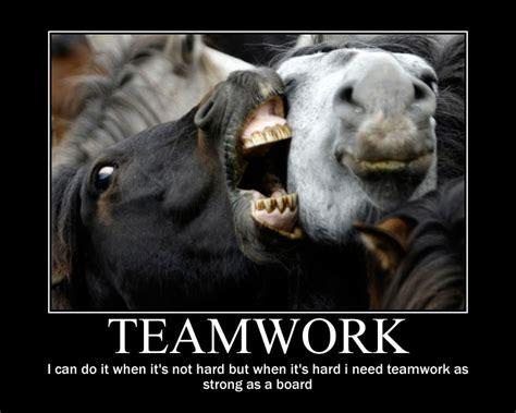funny quotes  teamwork quotesgram
