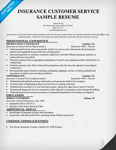 Insurance Customer Service Resume Sample