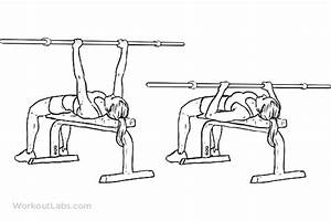 Close-Grip Overhand Barbell Bench Press – WorkoutLabs ...