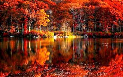 Fall Foliage Wallpapers Pixelstalk