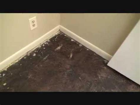 removing black tar adhesive   concrete floor