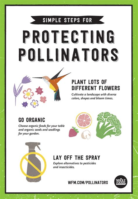Protecting Pollinators | Whole Foods Market