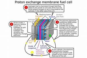 Will Hydrogen Fuel Cell Cars Ever Be Able To Catch On
