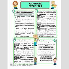 Grammar Exercises Worksheet  Free Esl Printable Worksheets Made By Teachers  English Grammar