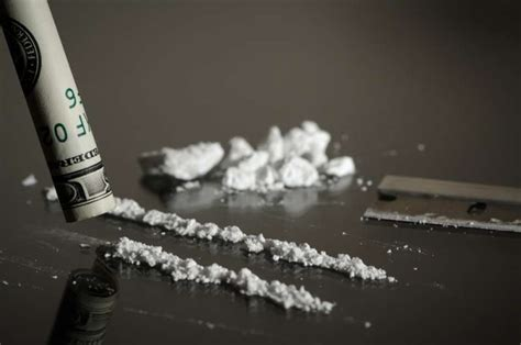 cocaine    brain  eat