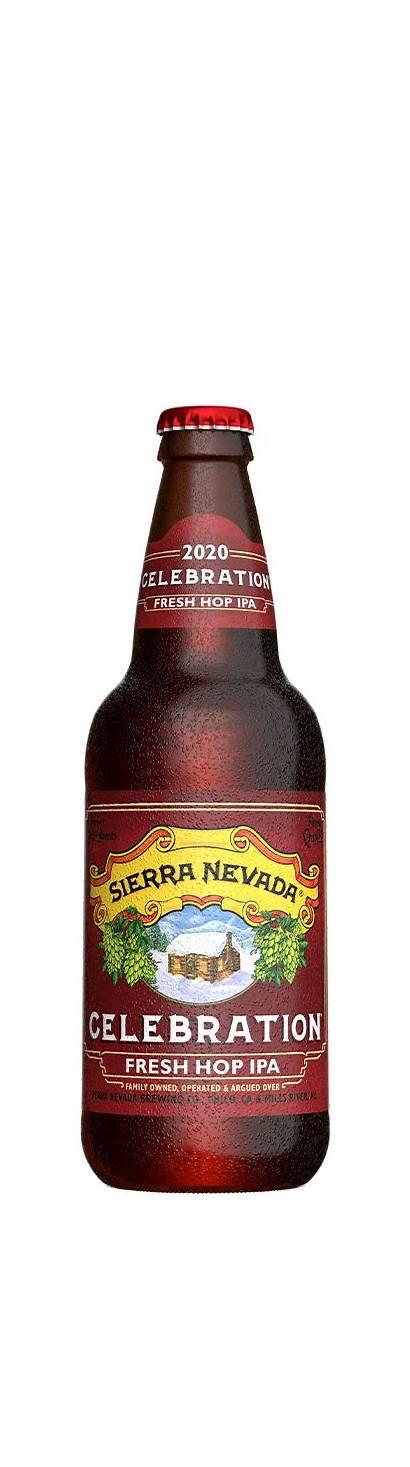 Celebration Sierra Nevada Ipa Beer Bottle Brut