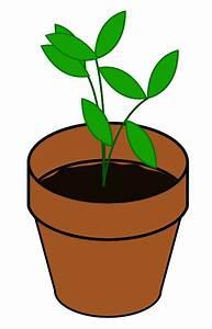 Cartoon Plant Clip Art - ClipArt Best
