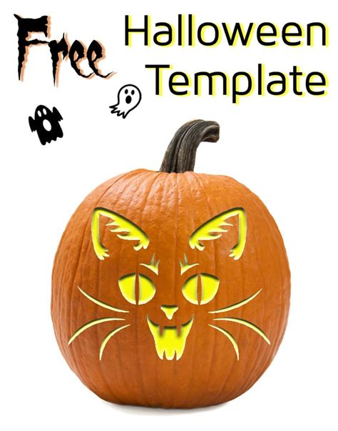 vampire cat template  pumpkin carving