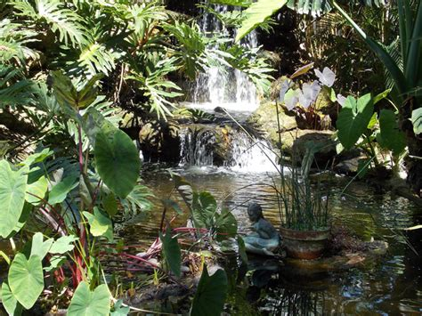 selby botanical gardens here are 10 of the most beautiful gardens that florida has