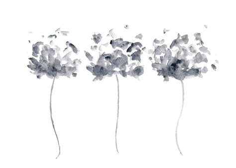 Abstract Flowers Black And White by Watercolor Flower Painting Watercolor Poppies Black And