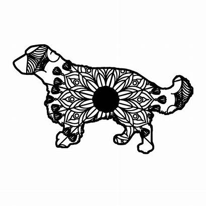 Springer Svg Spaniel Mandala Animal Mandalasvg