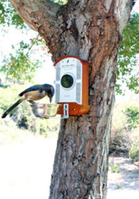 camera bag capture close    birds