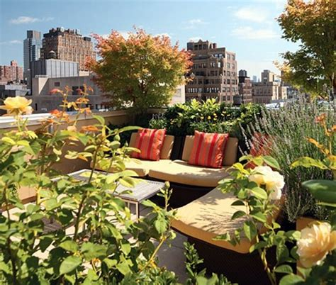 small urban garden design ideas  modern outdoor space