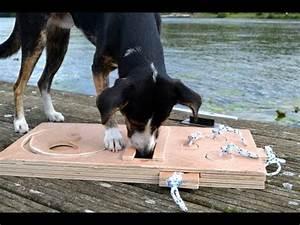 Hunde Intelligenzspielzeug Selber Machen : hundespiel aus holz bauen youtube ~ A.2002-acura-tl-radio.info Haus und Dekorationen