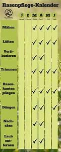 Vertikutieren Wann Am Besten : rasen pflege rund ums jahr was wann wichtig ist ~ A.2002-acura-tl-radio.info Haus und Dekorationen