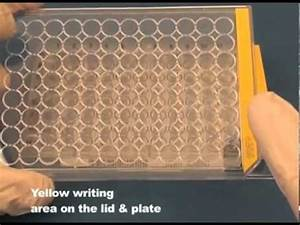 TPP Tissue Culture Plates - YouTube