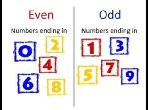 Even And Odd Numbers  Lesson 11 (go Math!) Youtube