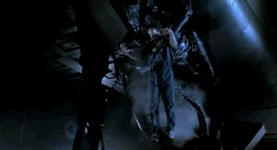 alien queen film gif find share  giphy