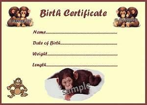 Cute monkey birth certificate certificates 4 reborn fake for Reborn birth certificate template