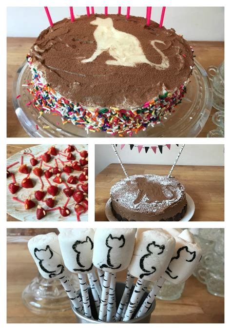 Cat And Candy Themed Birthday Party
