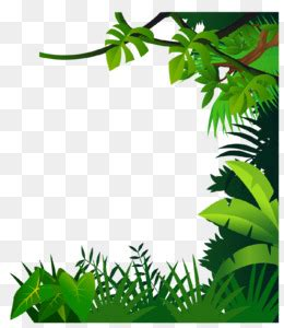 drawing jungle clip art border material png
