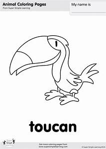 Car Wash Coloring Pages Toucan Coloring Page Super Simple