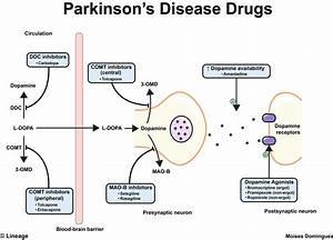 Parkinson's Disease Drugs - Neurology - Medbullets Step 2/3